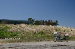 在沙子庭院停车处的自行车 库存图片