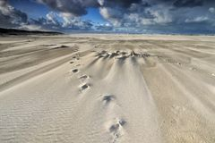 在沙子海滩的轨道在大风天 免版税库存图片