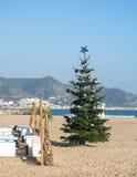 在沙子海滩的圣诞树 库存图片