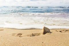 在沙子海滩的脚步 库存照片