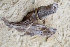 在沙子的一根老断枝栓与绳索 库存照片