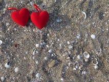 在沙子的两心脏与贝壳 库存照片