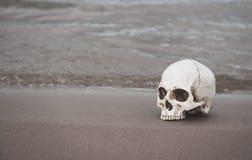 在沙子的人的头骨 背景棒万圣节月光附注 库存照片