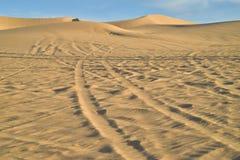 在沙子的公路车辆轨道在皇家沙丘,加利福尼亚,美国 库存图片
