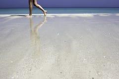 在沙子的反映 库存图片