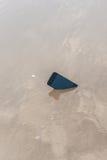 在沙子的坏iphone 库存图片