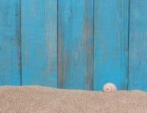 在沙子的壳反对老木背景 免版税库存图片