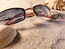 在沙子的太阳镜 库存图片
