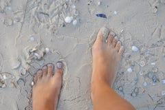 在沙子的女性脚 库存图片