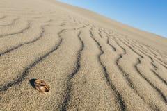 在沙子的婚戒 图库摄影