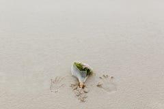 在沙子的婚礼花束 免版税库存图片