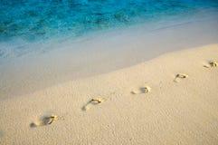 在沙子的对角脚印靠岸与海边缘线 库存照片
