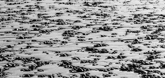 在沙子的小卵石 库存照片