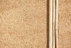 在沙子的干燥分支 免版税图库摄影
