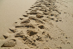 在沙子的摩托车脚印 免版税库存照片
