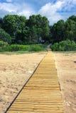 在沙子的木走道在森林里 免版税库存图片