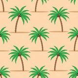 在沙子的棕榈树 库存照片