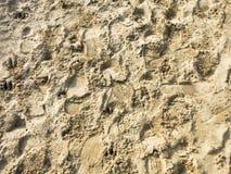 在沙子的步 库存图片