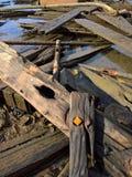 在沙子的残破的船在海滩 免版税库存照片