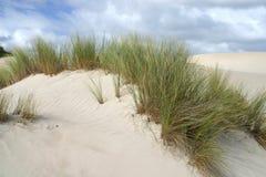 在沙子的沙丘 图库摄影