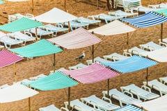 在沙子的海鸥在海滩,五颜六色的伞,机盖 库存照片