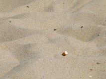 在沙子的烟头 免版税库存图片