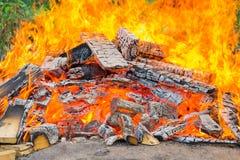 在沙子的篝火有绿色植物背景 免版税库存图片