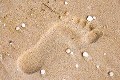 在沙子的脚印与壳 免版税图库摄影