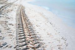 在沙子的脚印从一台拖拉机的轮子在蓬塔卡纳,多米尼加共和国海滩胜地的早晨 免版税库存照片