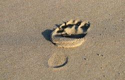 在沙子的脚印脚 库存图片