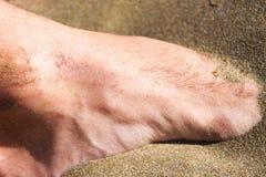 在沙子的脚 库存图片