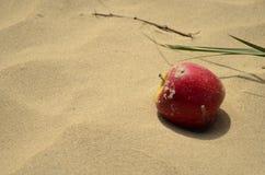 在沙子的苹果计算机 图库摄影