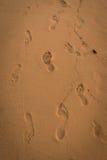 在沙子的许多脚印 库存图片