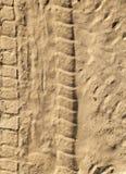 在沙子的跟踪 免版税库存图片