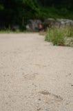 在沙子的跟踪 免版税库存照片