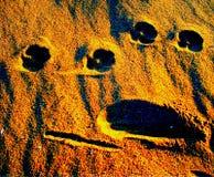 在沙子的面孔 免版税库存照片