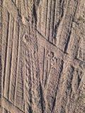 在沙子背景的轮胎印刷品 免版税库存图片