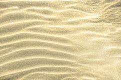 在沙子背景的金黄闪烁 免版税库存照片