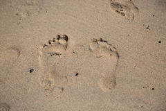 在沙子,子线的移动的脚印 免版税库存图片