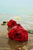 在沙子,标志的玫瑰 库存照片