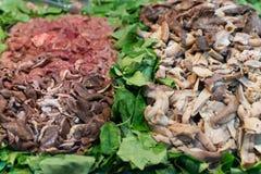 在沙拉的内脏杂碎:肺,肝脏,胆量 图库摄影