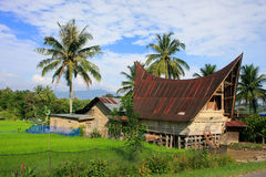 在沙摩西岛海岛,苏门答腊,印度尼西亚上的传统Batak房子 库存图片