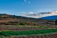 在沙溪村庄附近的露台的农田 库存图片