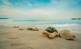 在沙滩的珊瑚由有天空蔚蓝和白色云彩的海 在热带天堂海滩概念的暑假 波纹 库存照片