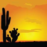 在沙漠例证的仙人掌黑传染媒介 库存照片