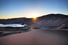 在沙漠和日落的绿洲 库存照片