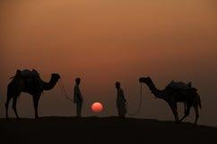 在沙漠和骑师的现出轮廓的两头骆驼 库存照片