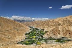 在沙漠山中的绿色山谷 免版税库存图片