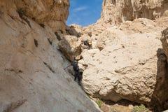 在沙漠峡谷小河里面的夫妇 免版税库存照片