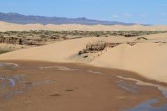 绿洲在沙漠戈壁 库存图片